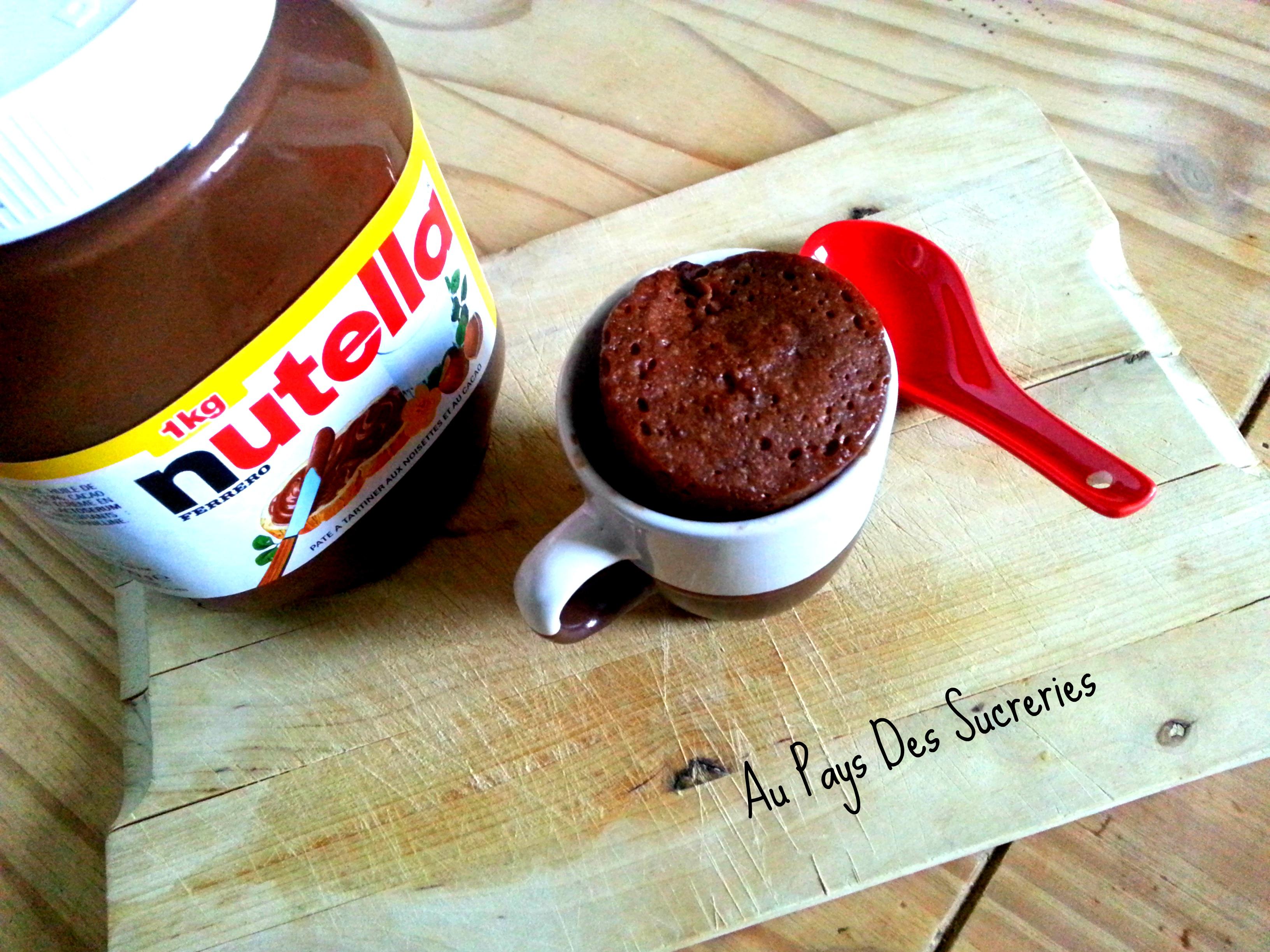 Mug Cake Nutella Fondant Sans Oeuf
